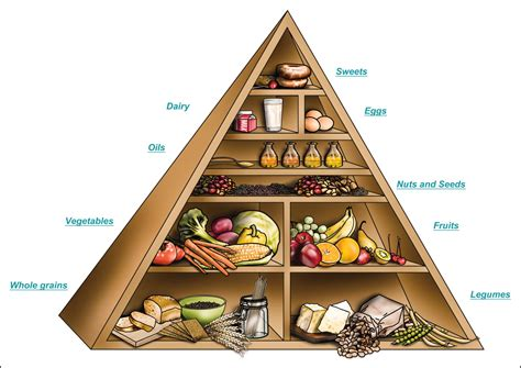 food pyramid vegetarian diets in children and adolescents internet