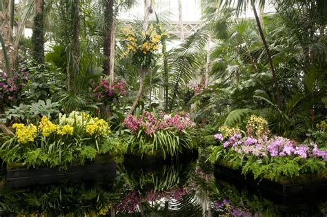 The New York Botanical Garden Show At Botanical Garden