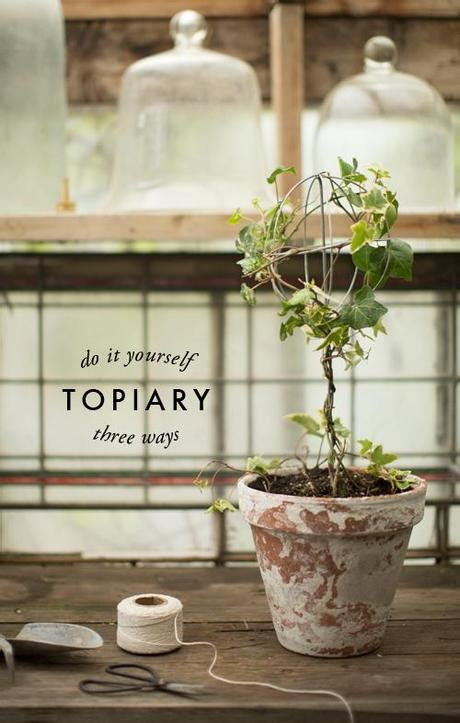 how to make a topiary 3 ways to make a topiary paperblog