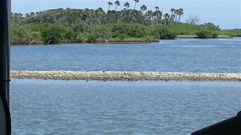 turtle mound boat tours new smyrna beach our teen caught the first fish of the day picture of