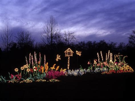 christmas lights for outside bushes buyers guide for the best outdoor christmas lighting diy