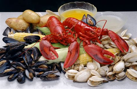 Gold Coast Cruises Tours Seafood Buffet Now Onboard Seafood Buffet