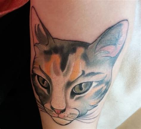 captured tattoo 14 tattoos that perfectly capture cattitude ideas cat