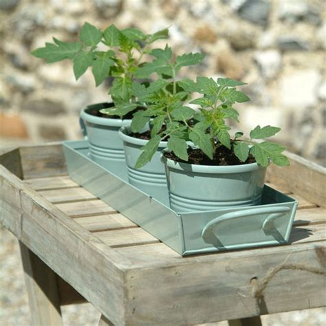 ckb ltd windowsill pots and tray herb planter gift set garden trading herb pots on a tray shutter blue garden