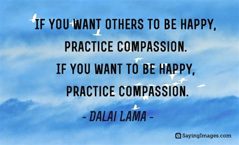 from heaven practicing compassion for yourself and others books dalai lama quotes pictures sayingimages