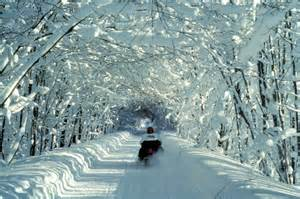 Cadillac Mi Snowmobile Trails Why Is Snowmobiling In Michigan The Most Popular Winter