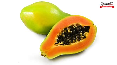 can dogs eat papaya 14 fruits your bulldog will to eat