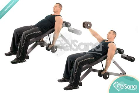 incline bench front raise one arm dumbbell front raise on incline bench