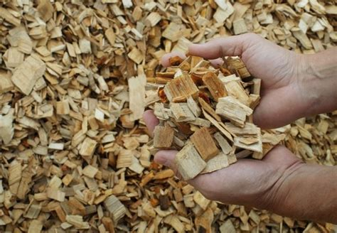 Paper From Woodchips - biofuel energy content boosted to crude level
