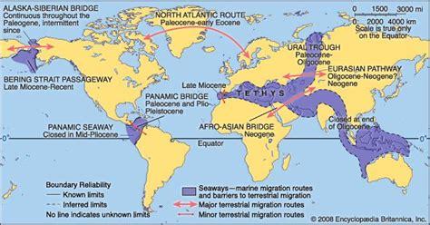 Lions China 813 by Cenozoic Era Geochronology Britannica
