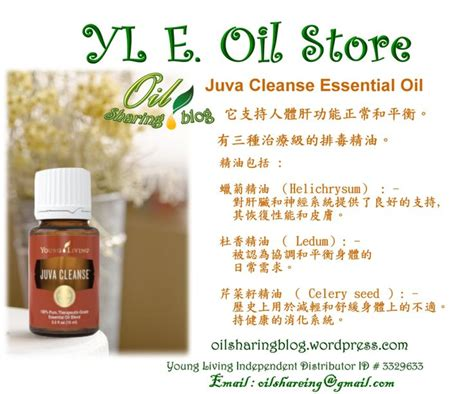 Digize Detox by Juva Cleanse Essential Version 2 Oil 身心靈健康精油 Young