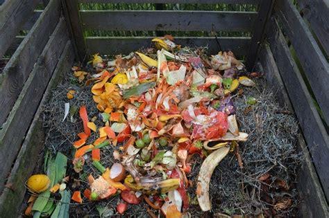 food waste  nutrition source harvard  chan