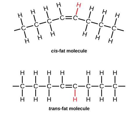 healthy fats chemistry the about fats saturated fats pretty healthy