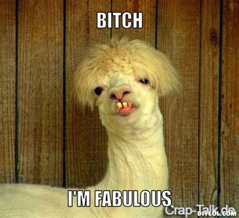 I Am Fabulous Meme - 17 best images about fabulous on pinterest i m fabulous