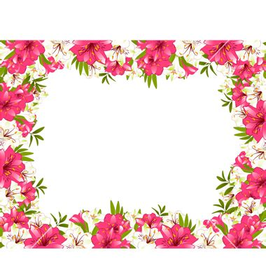 printable borders flowers flower border free cliparts co