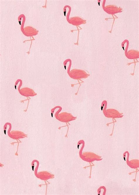 flamingo wallpaper on love it or list it wallpapers flamingos картинки pinterest flamencos