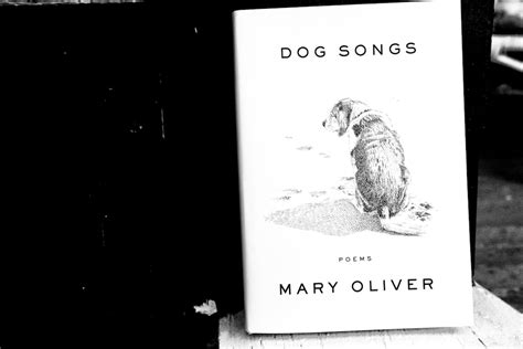 puppy songs review quot songs quot is it possible for me to not a oliver book bedlam