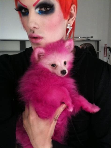 jeffree dogs with his named fabulous jeffree photo 8082754 fanpop