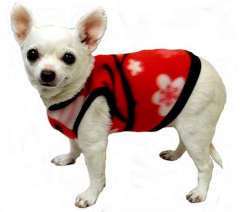 shih tzu chatter two puppy harness xs for shih tzu harness for german shepherd puppy elsavadorla