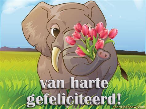 afbeelding verjaardag bos bloemen spaans hartelijk gefeliciteerd olifant inspectionconference