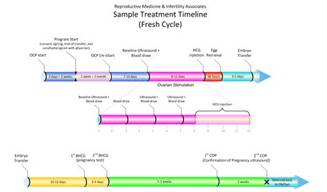 ivf cycle timeline reproductive medicine  infertility