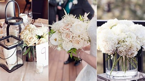 Roses Are Blush Roses Are Bashful by Blush And Bashful Denver Wedding Flowers Bare Root