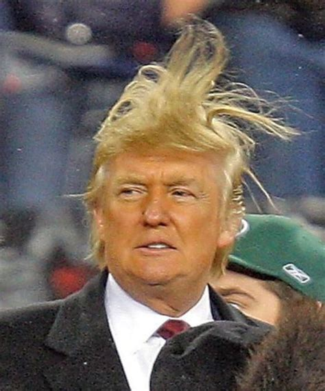 what does thr wob hairstyle look like bernie sanders quot i think donald trump s views on