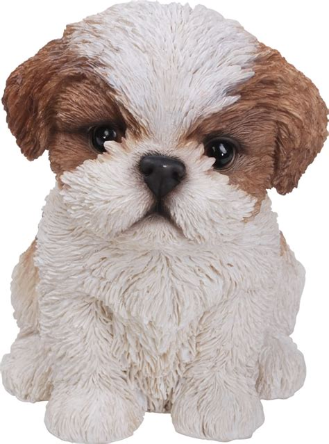 shih tzu as a pet pet pals shih tzu puppy in brown resin garden ornament 163 9 49 garden4less uk shop