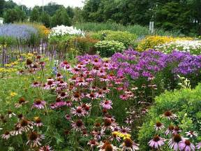 planting a butterfly garden southern