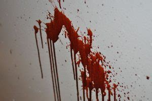 bloodstain pattern analysis case study intermediate csi online course 171 national forensic science