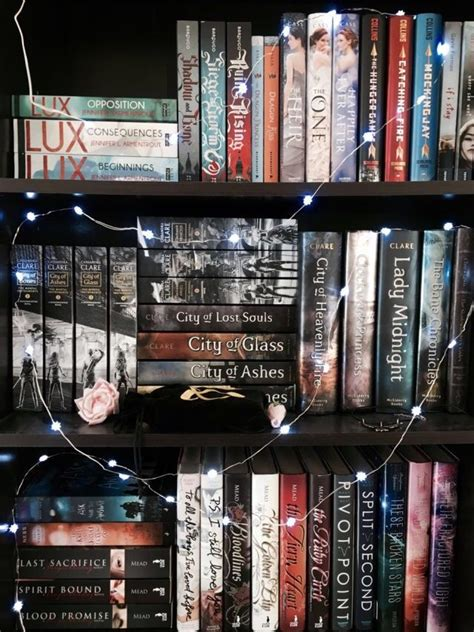 organization shelves best 25 bookshelf organization ideas on pinterest