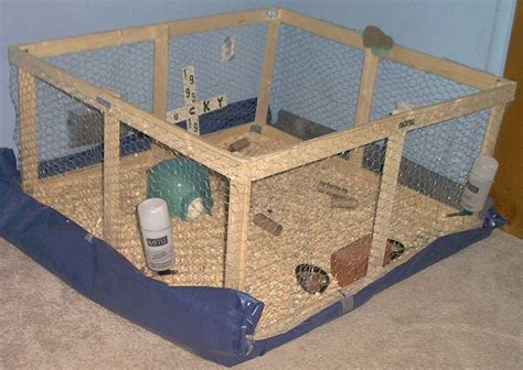 How To Make A R For A Chicken Coop Small Blog Guinea Pig House Plans
