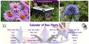 Plants For Formal Gardens - what can i plant in my garden to help honey bees greenside up