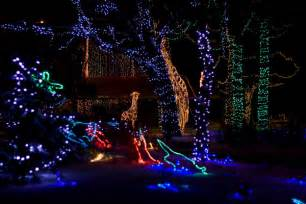 how much is zoo lights potterlychallenged