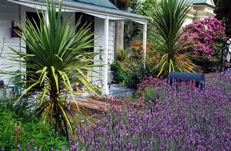 cottage gardens in australia horticulture stock photos images articles free photos for