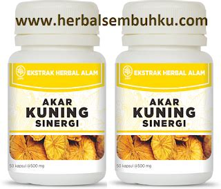 Bawang Dayak 60kps Obat Kolesterol Asam Urat Grosir galery produk semua herbal gt gt gambar nama volume harga fungsi toko obat herbal di