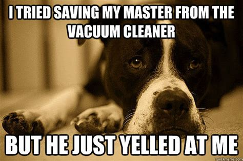 Dog Problems Meme - the funniest first world dog problems memes