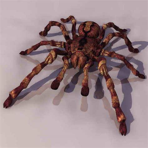 3d Spider Spider 3d Model Download 3d Model Crazy 3ds Max Free