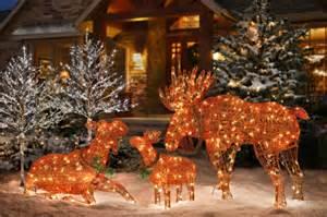 decoration de noel exterieur rennes lumieres