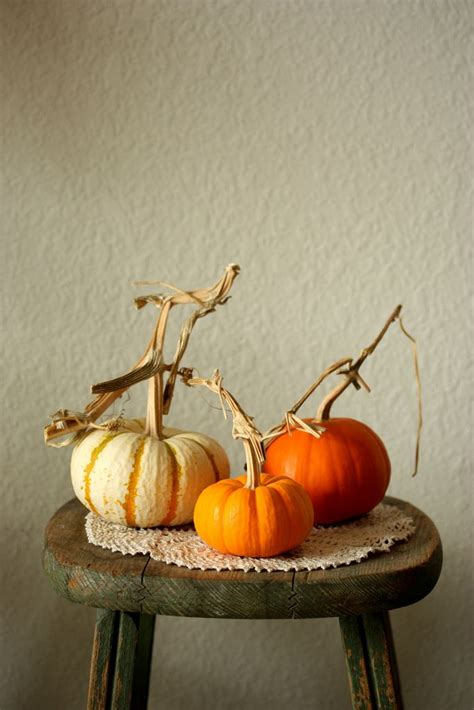 how did pumpkins get associated with pkin by mellow stuff fall