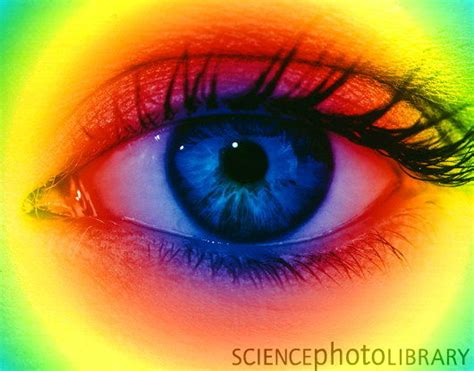 color blind contacts ali s eye care contact lens clinic services