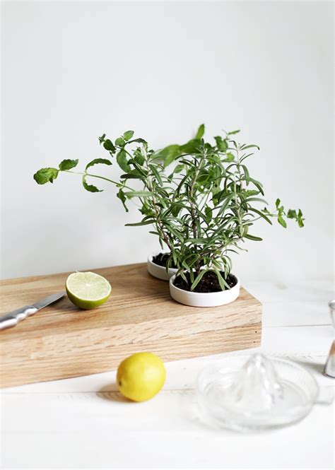 herb planter diy diy herb planter cutting board 187 the merrythought