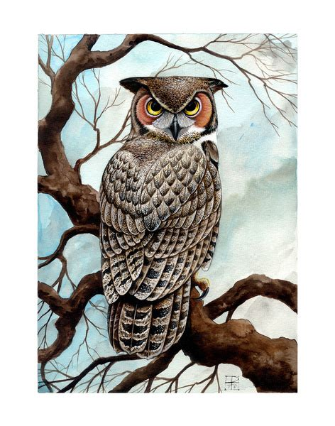 printable pictures of great horned owl great horned owl art print by voss fineart society6