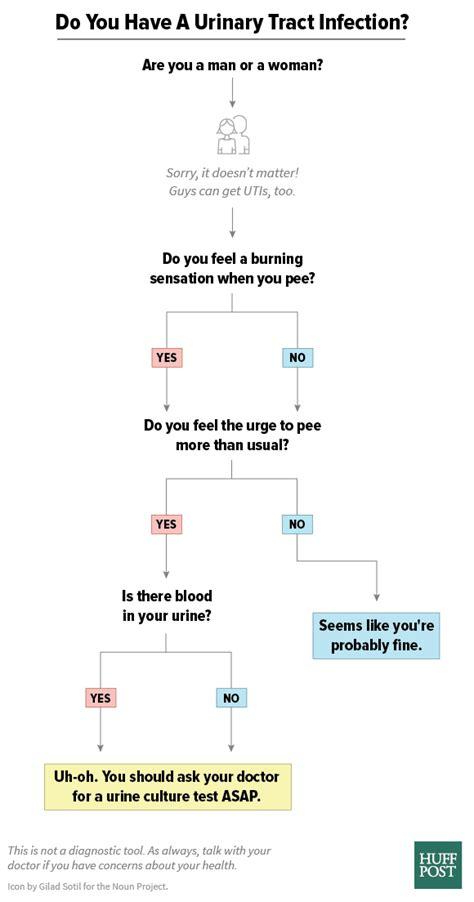 how to tell if has a uti how to if you a uti in one chart huffpost