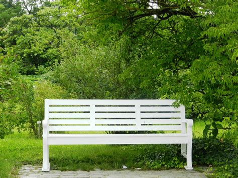 peace bench free photo bench peace of mind park free image on