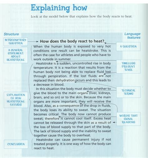 Exles Of Explanation Essay by Explanation Writing Welcome To Room 19