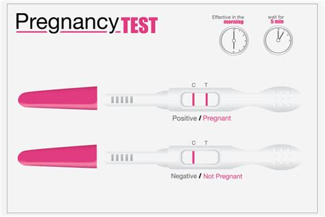 facts  didnt   home pregnancy tests