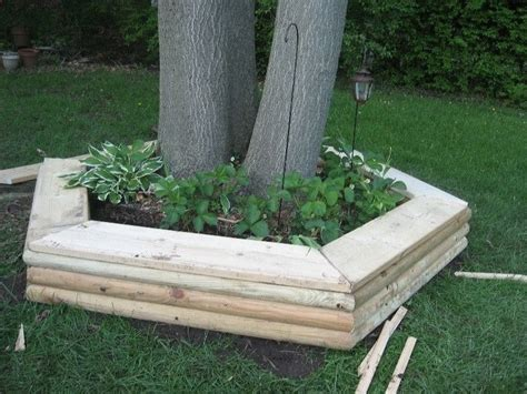 diy tree bench tree bench designs that literary embrace nature