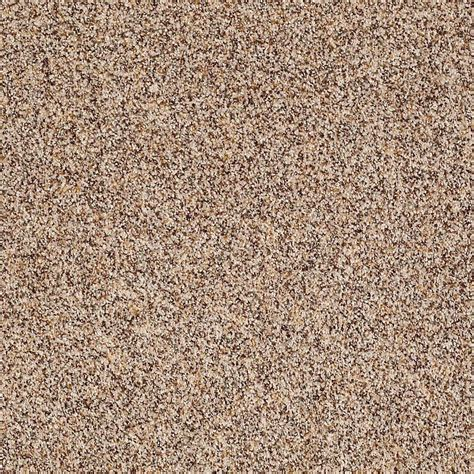 home decorators collection carpet sle wholehearted ii color vanilla frost twist 8 in x 8 home decorators collection carpet sle slingshot ii