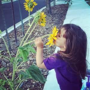 photos children smelling flowers